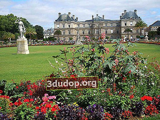 Luxemburgs trädgårdar i Paris