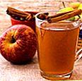 Sari epal bukan alkohol buatan sendiri