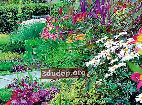 Komposisi taman dan undang-undang warna
