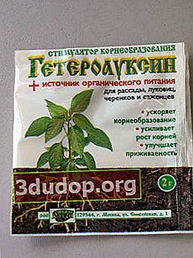 Preparate de stimulare a rădăcinilor