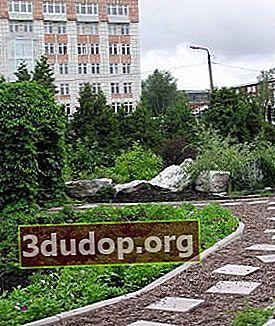 Botaniska trädgården vid Perm University