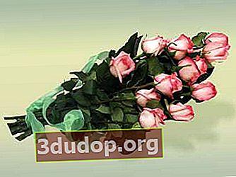 Potong penjagaan bunga